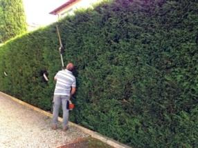 03 Giardinaggio (2)